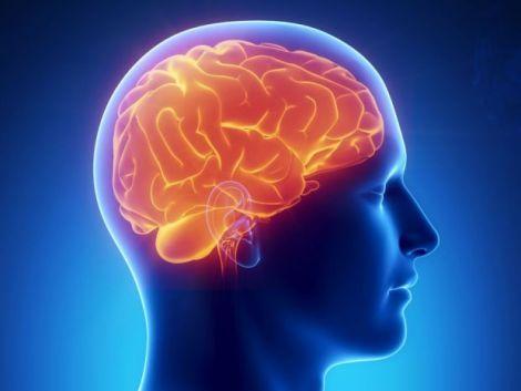 Реакція мозку на біль
