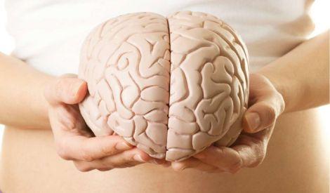Вітамін для хорошої роботи мозку