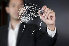 Продукти для правильної роботи мозку