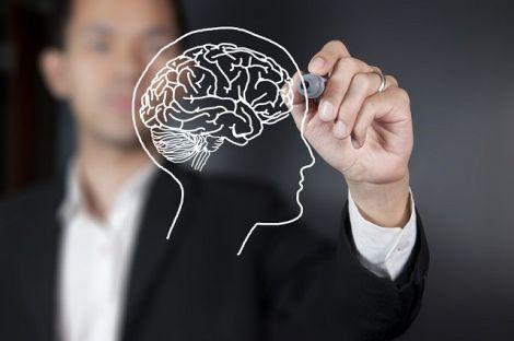 Їжа для покращення роботи мозку