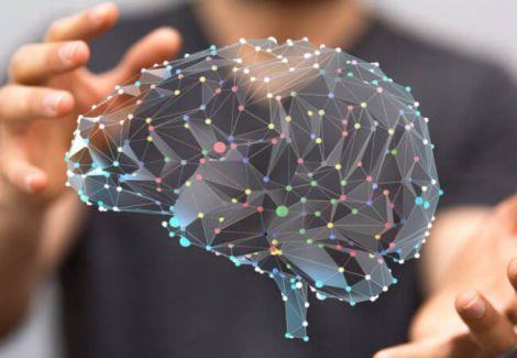 Продукти, які позитивно впливають на мозок