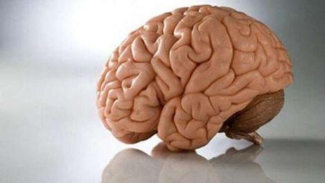 Вітамін, який покращує здоров'я мозку