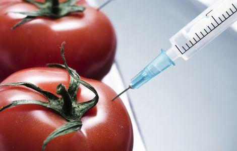 Шкода ГМО