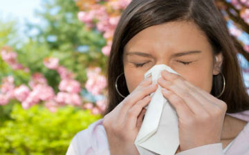 Які трави лікують алергію?