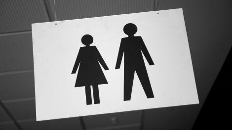 Різновиди статі