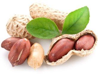 Лікарі назвали найкорисніший для судин горіх