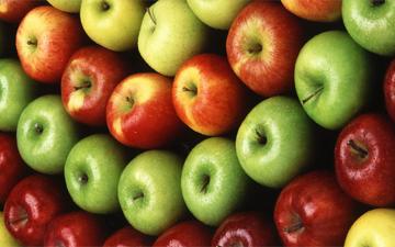 розвантажувальний день на яблуках дуже популярний