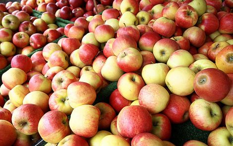 Яблука від раку