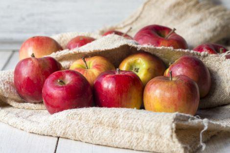 Мікроби, які містяться у яблуках