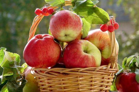 Як їсти яблука правильно?