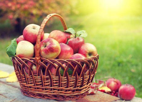 Яблука від старіння