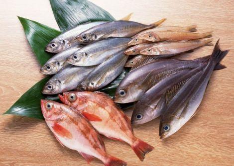 Жирні сорти риби