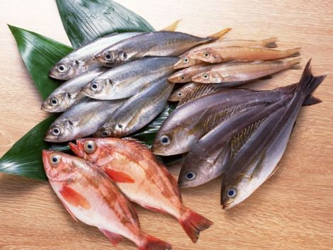 Риба - секрет довголіття