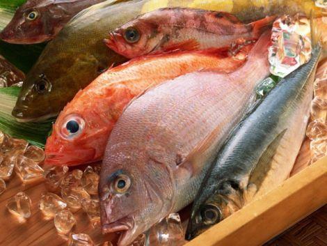 Шкідлива морська риба