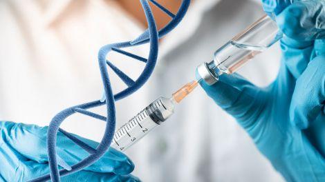 Відкрито новий вид боротьби з раком за допомогою терапії Т-клітин