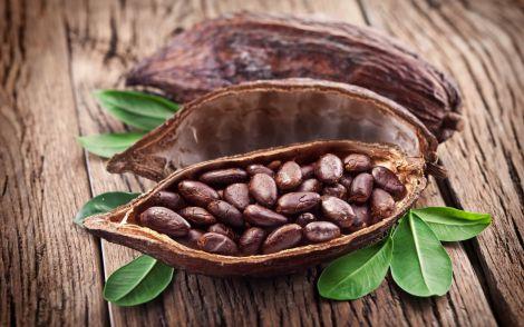 Корисні какао-боби для схуднення
