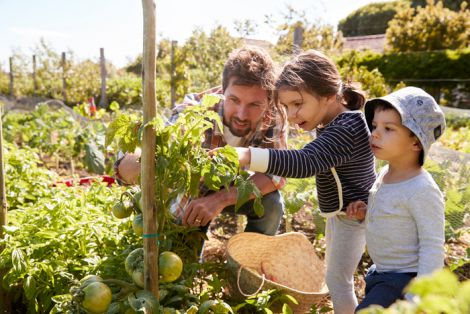 Користь садівництва для психіки