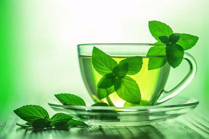 м'ятний чай для вагітних