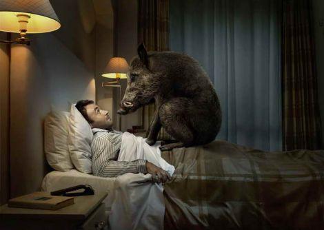 Чому ми страждаємо від нічних жахіть?