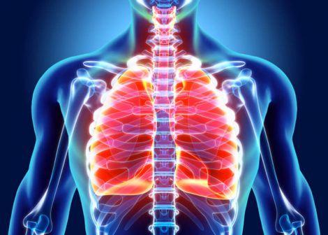 Здорові легені - здоровий організм