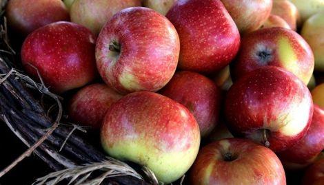 Яблука містять у своєму складі багато корисних речовин