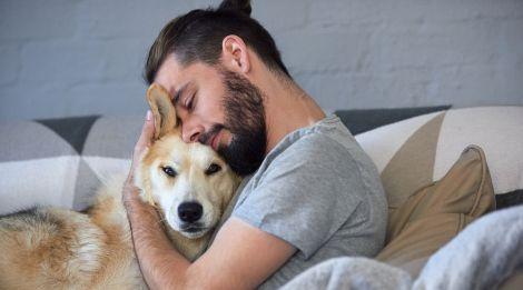 Власники собак хворіють рідше