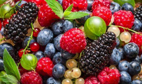 Ягоди зупинять старіння мозку