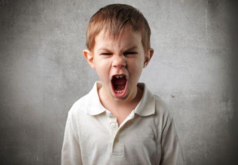 Агресія виникає на генетичному рівні