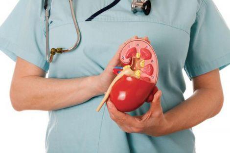 Корисні продукти для здоров'я нирок