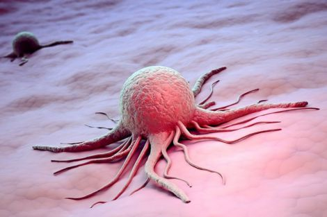 Самознищення ракових клітин