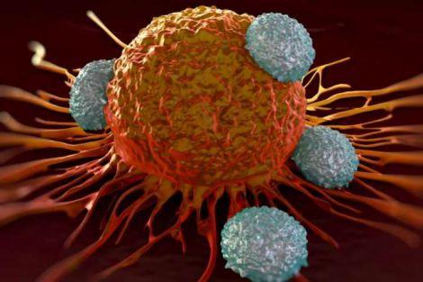 Блокування ракових клітин