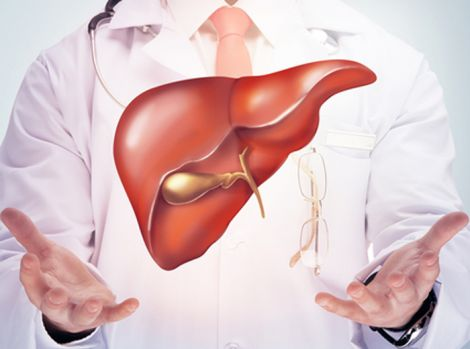 Здорова печінка