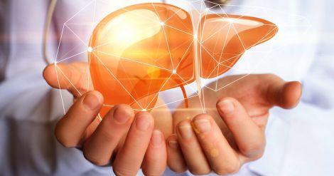 Захист печінки