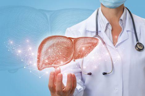 Очистка печінки від алкоглю