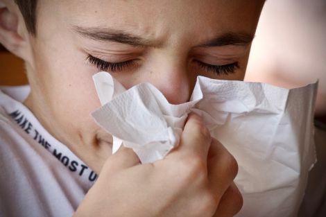Поради, які допоможуть вилікувати алергію