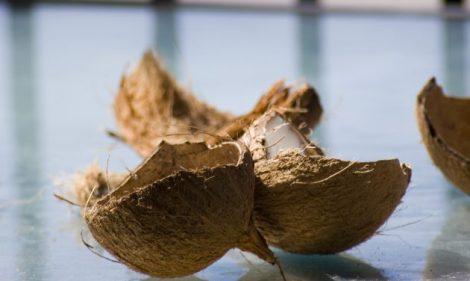 Кокосове масло ідеальне для сухого волосся