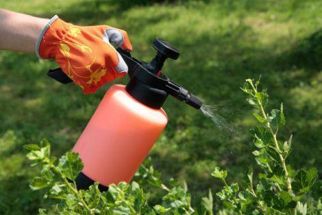 Шкода пестицидів