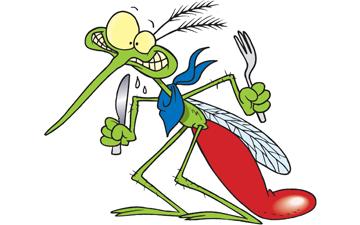 комарі мають свої уподобання