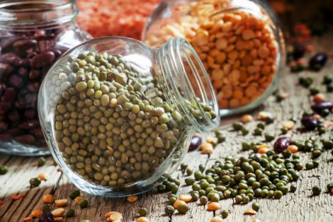 Користь бобових культур для організму