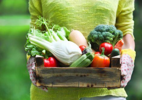Полезные овощи на нашем столе