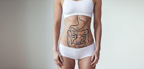 Як мікробіом кишечника пов'язаний зі старінням?