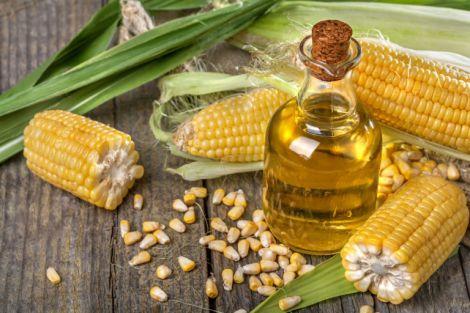 Рослинні олії для покращення здоров'я