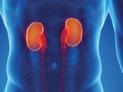 Перші симптоми хворих нирок