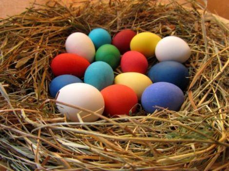 Готуємось до Великодня: натуральні барвники для пасхальних яєць