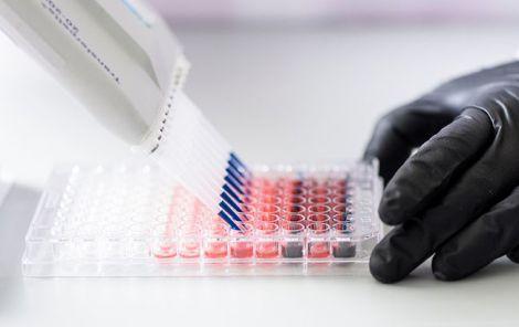 Клітинне відкриття