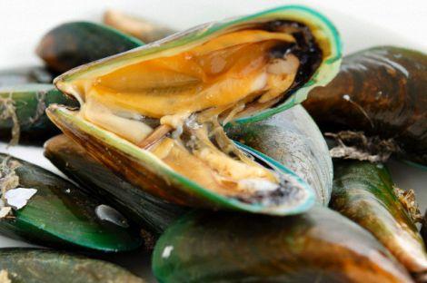Морський продукт, що рятує від раку