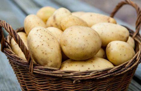 Шкода картоплі для жінок