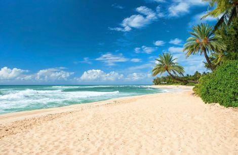 Інфекції можна підхопити на пляжі