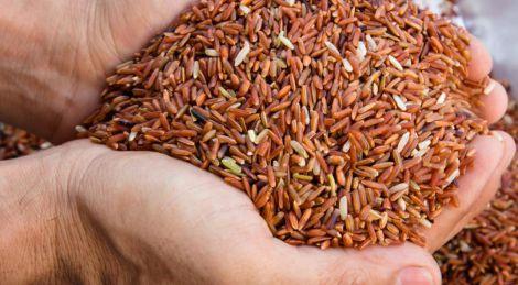 Користь коричневого рису