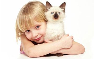 слід встановлювати правила у поводження дітей з тваринами